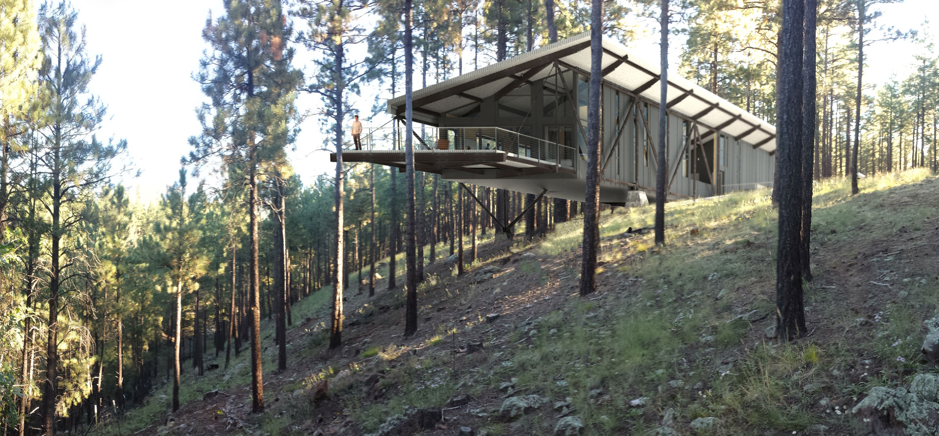 Treehouse truss domusstudio architecture for Architecture and design tree house